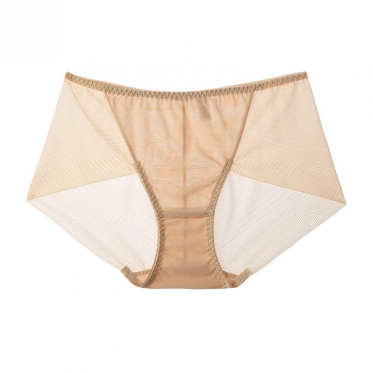 Beige Sexy Meshy Hiphugger Panty